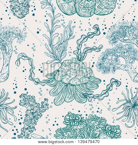 Collection of marine plants, leaves and seaweed. Vintage seamless pattern with hand drawn marine flora. Vector illustration in line art style.Design for summer beach, decorations.
