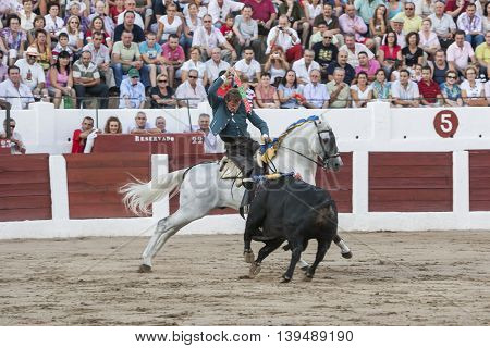 Linares SPAIN- august 31 2011: Spanish bullfighter on horseback Fermin Bohorquez bullfighting on horseback in Linares Spain