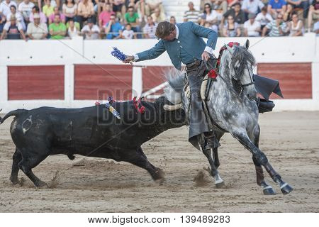 Linares SPAIN- august 31 2011: Spanish bullfighter on horseback Fermin Bohorquez bullfighting on horseback in Linares Spain