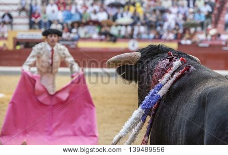 Jaen SPAIN- October 13 2008: Bullfighter with the capote or cape in the Bullring of Jaen Spain