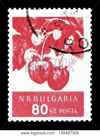 BULGARIA - CIRCA 1956 : Cancelled postage stamp printed by Bulgaria, that shows strawberries.