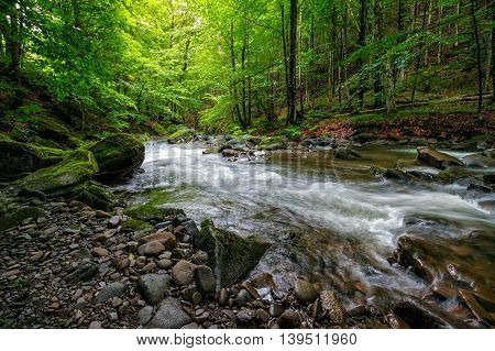 Mountain Stream In Green Forest
