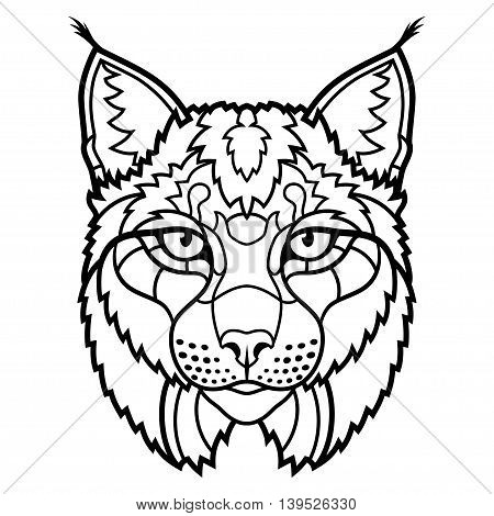 Wildcat lynx mascot head sketch line art. Vector illustration