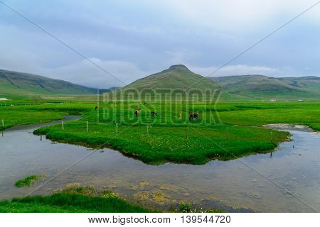 Countryside In The West Fjords Region