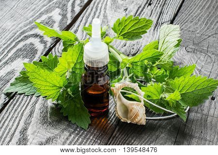 Essential oil melissa officinalis in a small brown bottle and pendant aromatic fresh melissa on a dark wooden table