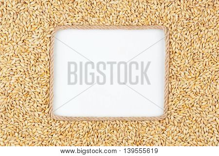 Frame made of rope with barley grains and a white background with space for your text