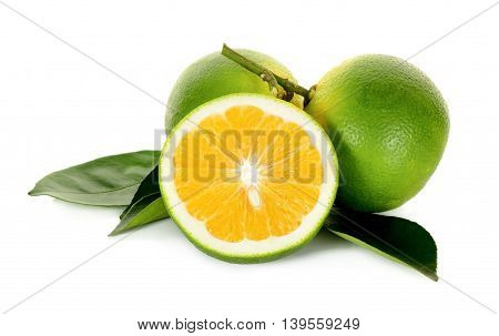 Citrus Sinensis Isolated On The White Background