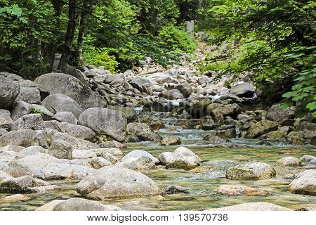 Peaceful scene with water flowing over rocks and stones