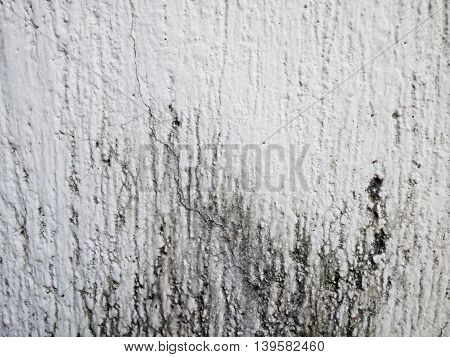 Stock photo of grunge wall for background template