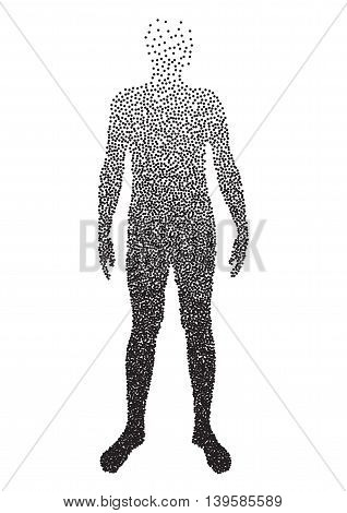 Half body , Male Anatomy, designed using square dot, graphic vector. EPS