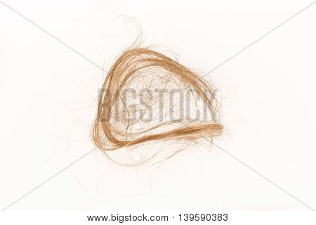 Close-up of hair loss, long hair, alopecia on white background with brush, comb nobody poster