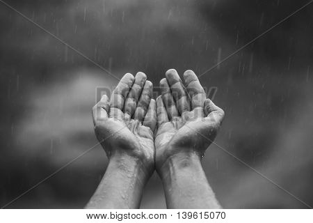 male hands folded in his hands and pulled up to the sky from which the falling drops of warm summer rain.