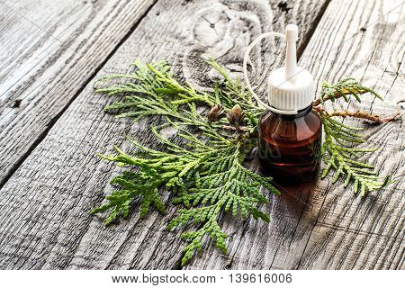 Essential oil arborvitae (thuja) and fresh sprig on a dark wooden table