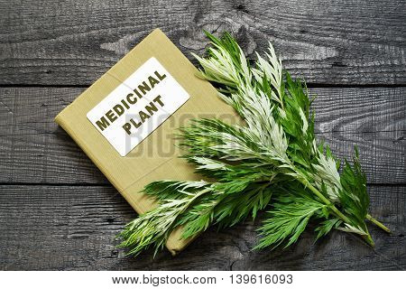 Medicinal plant wormwood (Artemisia absinthium) and herbalist handbook on a dark wooden table