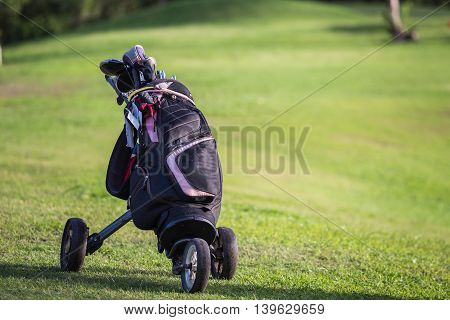 Black golf clubs drivers on green field background
