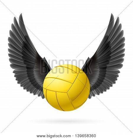 Realistic volley ball with black wings emblem, vector
