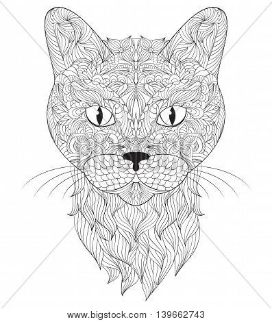 Vector illustration of head of cat on white background.Coloring page for adult.