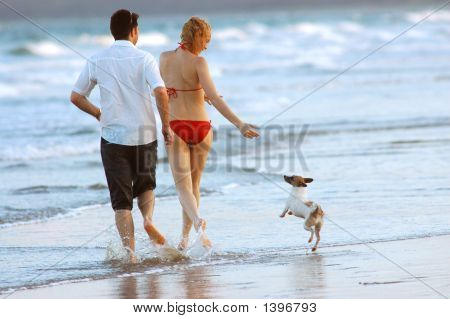 Couple And Dog On Beach