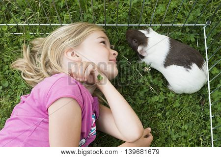 Child Girl inside paddock relaxing and playing with her guinea pigs outside on green grass lawn in the garden.
