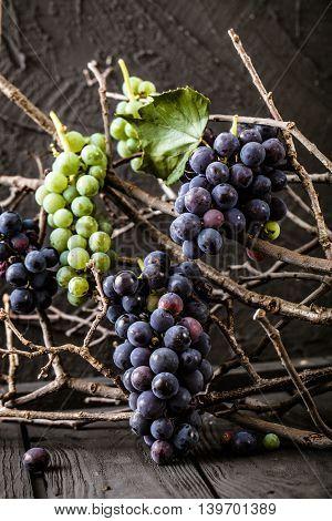 Fresh grapes on wood. Autumn fruit background