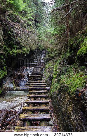 Hiking Trail  Across River In Slovak Paradise National Park, Slovakia