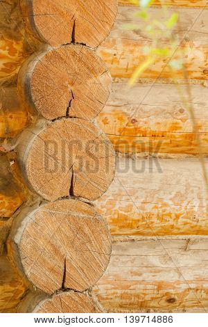 Old wooden house in village. Detail of a wall. Weathered, rough surface of the log. Precise details at high magnification.