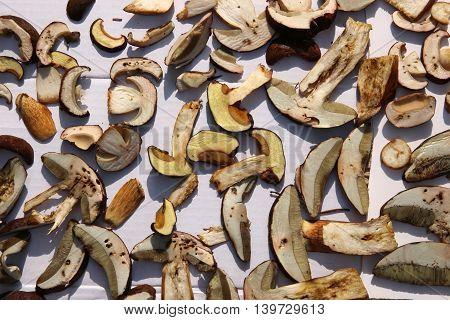 Dried mushrooms ,Cut fragrant dried porcini mushrooms