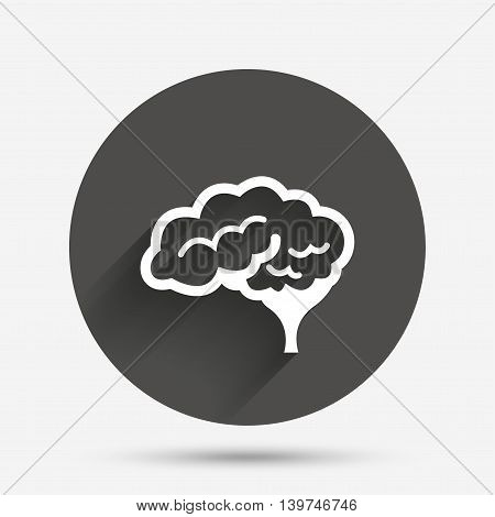 Brain with cerebellum sign icon. Human intelligent smart mind. Circle flat button with shadow. Vector