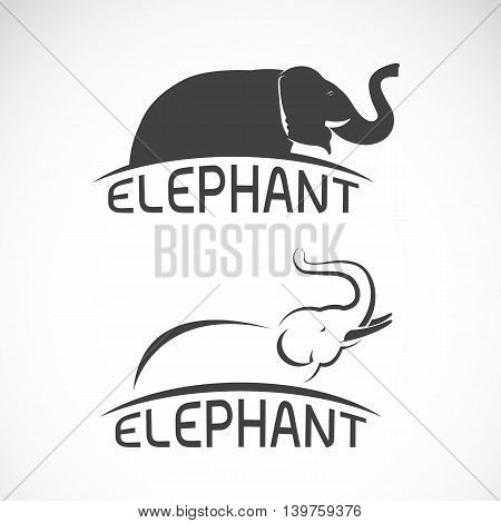 Vector images of elephant design on a white background Vector elephant for your design.