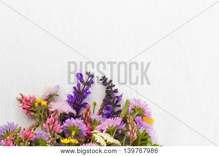 Bunch of wildflowers on white background, copyspace. Colorful field flowers mix. Bright blossom motive