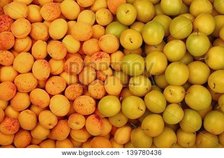 Background Of Yellow Plums And Apricots Close Up