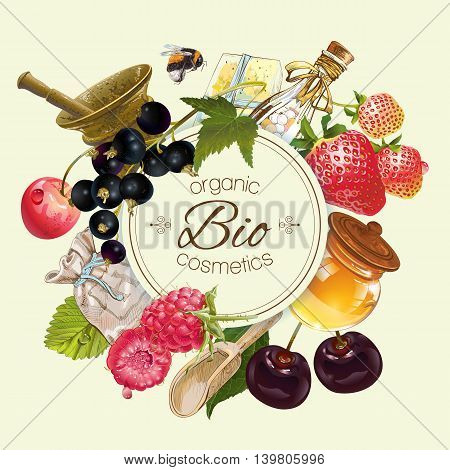 Vector vintage fruit and berry round cosmetic banner with honey and mortar .Design for herbal and fruit tea, natural cosmetics, candy, grocery and health care products. Can be used as logo design
