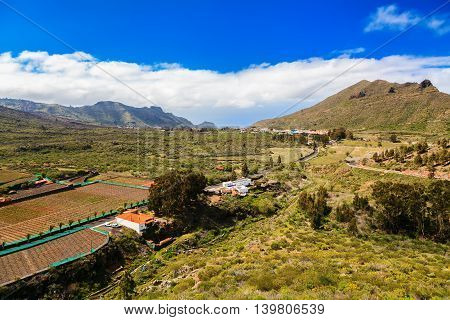 Valle De Arriba Near Santiago Del Teide