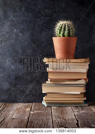 Books and cactus in front of classroom chalk board. Back to school concept with copy space