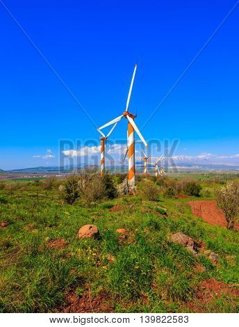 Flowering Golan Heights on a sunny day. Several huge modern windmills. Seen in the distance the snow-covered Mount Hermon
