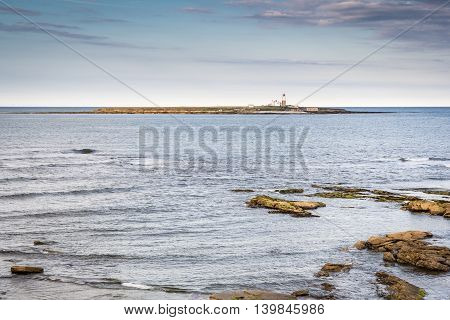 Coquet Island Nature Reserve, is a small island just off the Northumberland coast at Amble and is home to many seabirds