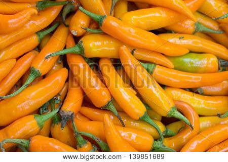 spicy yellow chilly peppers in the market, food background