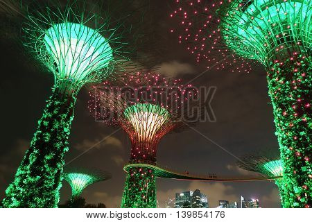 Supertree Grove Of Gardens By The Bay In Singapore Center