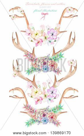 A set with the antlers, horns entwined by flowers, succulents, leaves and plants, isolated hand drawn in watercolor on a white background