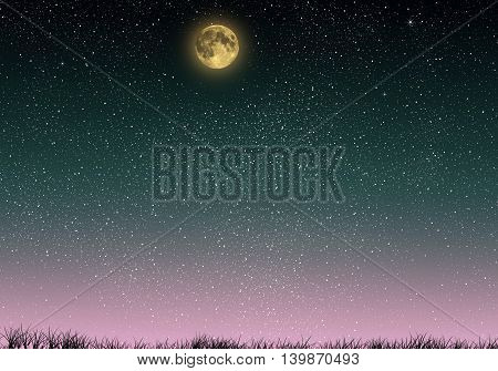 Beautiful magic blue night sky with grass and fullmoon and stars closeup