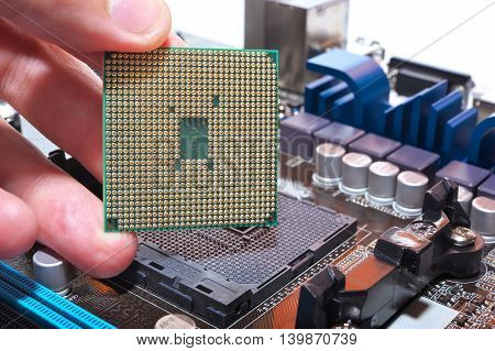 Cpu In Hand And Motherboard. Installation Central Microprocessor In Motherboard