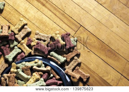 A pileup of dog biscuits spilled on the floor.