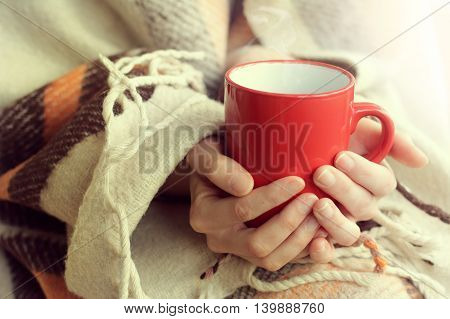 red cup warming your hands and aroma of hot drink on a background of warm plaid / attributes cozy warm holiday home