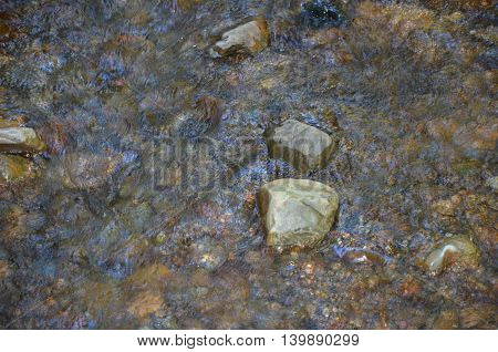 Rocks in babbling brook in Muir Woods, California