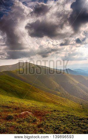 Polonina Borzava (carpathians, Ukraine 2016)