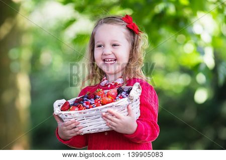 Child picking berries on a farm. Little girl eating strawberry raspberry blueberry blackberry red and black currant. Kids eat berry. Healthy nutrition for children. Toddler kid with fruit basket.