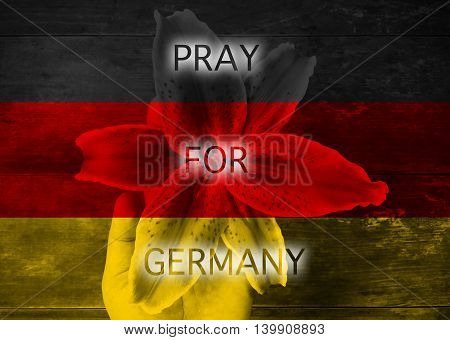 Pray for Germany on hand holding flower background