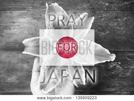 Pray for Japan on hand holding flower background
