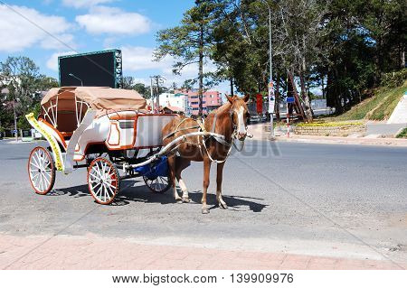A horse wagon is on the road