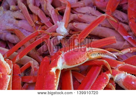 Crab legs and claws detail  pinkish background